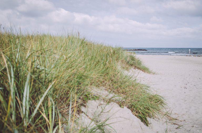 Deich mit Strand in Brasilien (Schönberg, Schleswig-Holstein)