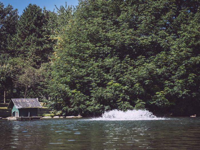 Wasserspiel mit Bäumen im Hintergrund in Bremen (Ense, Nordrhein-Westfalen)