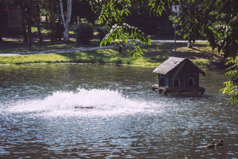 Kleines Entenhaus im Teich in Bremen (Ense, Nordrhein-Westfalen)