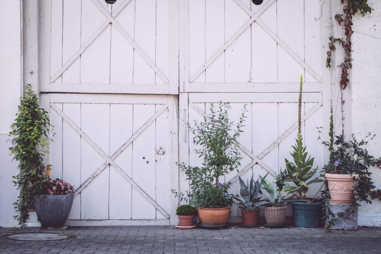 Weißes Tor in Bremen (Hohentengen, Baden-Württemberg) mit Pflanzen davor