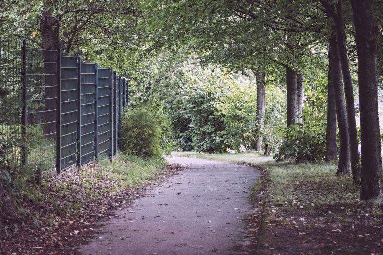 Fußweg und Bäume am Rand in Bremen (Wermelskirchen, Nordrhein-Westfalen)