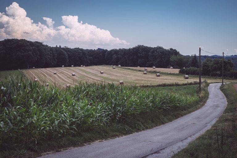 Straße entlang des Feldes mit Heuballen in Bremen (Wermelskirchen, Nordrhein-Westfalen)