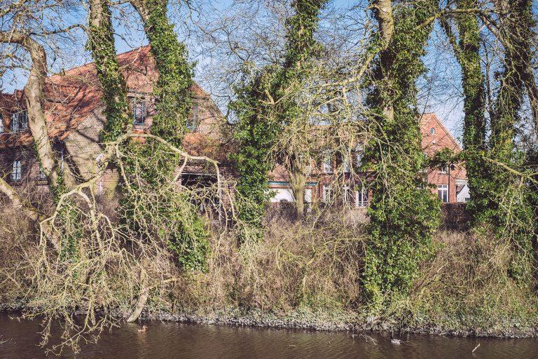 Fluss mir Bäumen in Neustadtgödens (Sande, Niedersachsen)