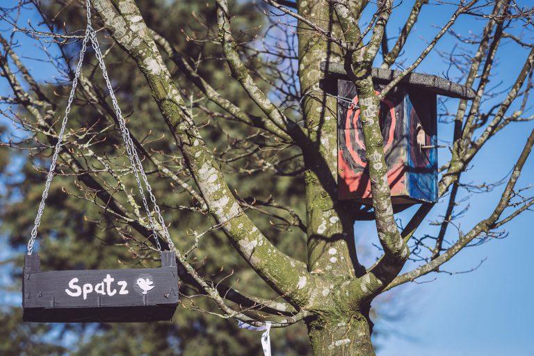 Vogelhaus im Baum in Neustadtgödens (Sande, Niedersachsen)