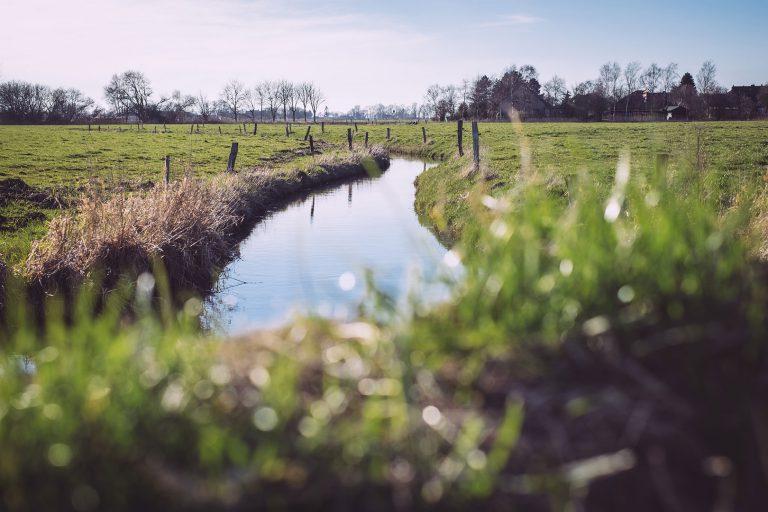Fluss in Neustadtgödens (Sande, Niedersachsen)