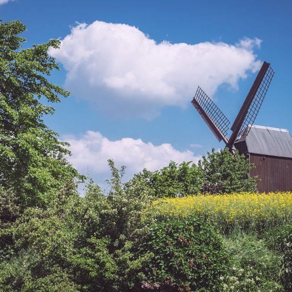 Paltrockmühle in Asel (Harsum, Niedersachsen)
