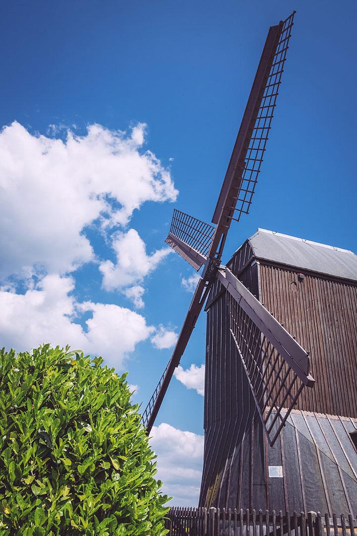 Windmühle in Asel (Harsum, Niedersachsen)
