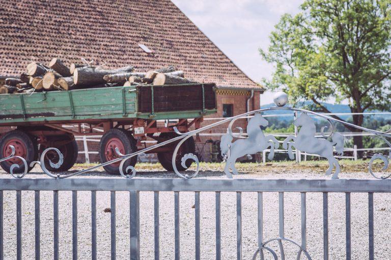 Hof in Asel (Harsum, Niedersachsen)