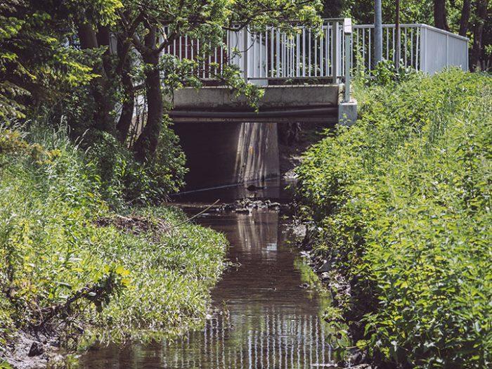 Unsinnbach in Asel (Harsum, Niedersachsen)