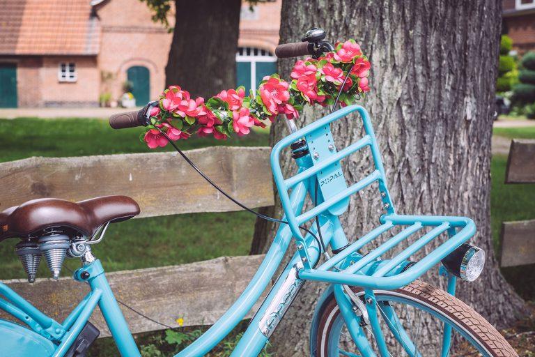 Blaues Fahrrad in Immer (Ganderkesee, Niedersachsen)