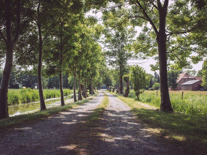 Schotterweg in Harrierwurp (Brake, Niedersachsen)