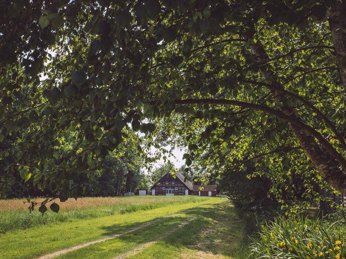 Landwirtschaftliches Anwesen in Harrierwurp (Brake, Niedersachsen)