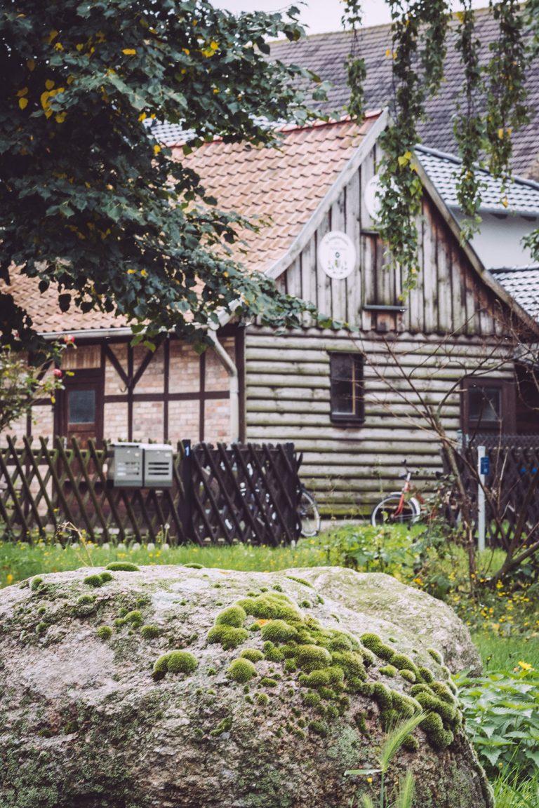 Stein in Schmatzfeld (Hordharz, Sachsen-Anhalt)