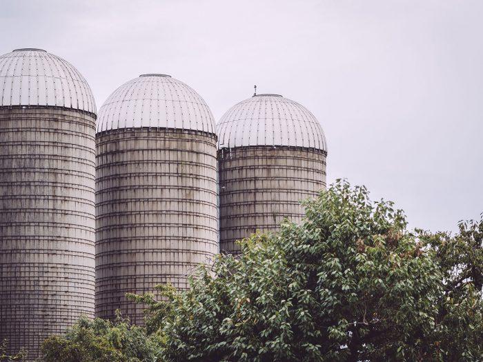 Agrargenossenschaft Schmatzfeld (Hordharz, Sachsen-Anhalt)