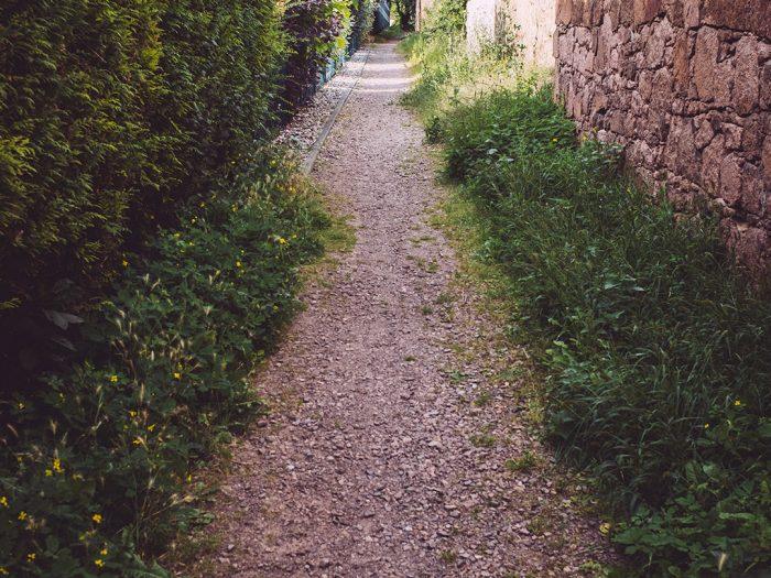 Weg in Teicha (Petersberg, Sachsen-Anhalt)