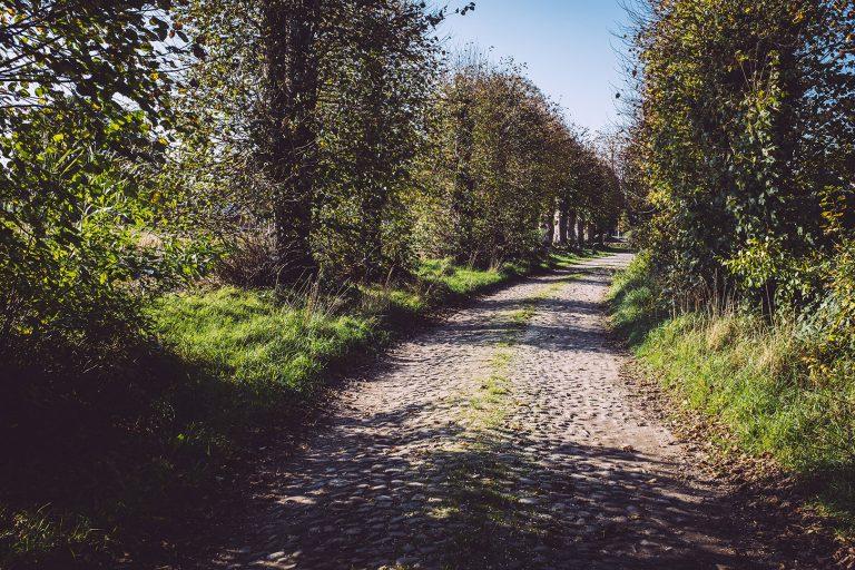 Kopfsteinpflaster in Düring (Loxstedt, Cuxhaven, Niedersachsen)