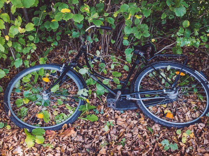 Fahrrad in Düring (Loxstedt, Cuxhaven, Niedersachsen)