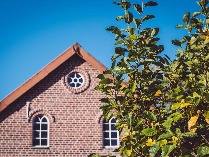 Baum und Backsteinhaus in Düring (Loxstedt, Cuxhaven, Niedersachsen)