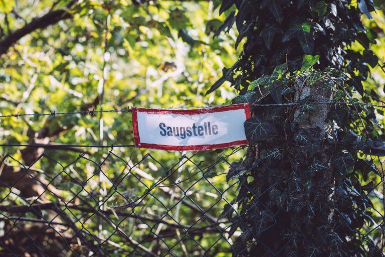 Saugstelle in Düring (Loxstedt, Cuxhaven, Niedersachsen)
