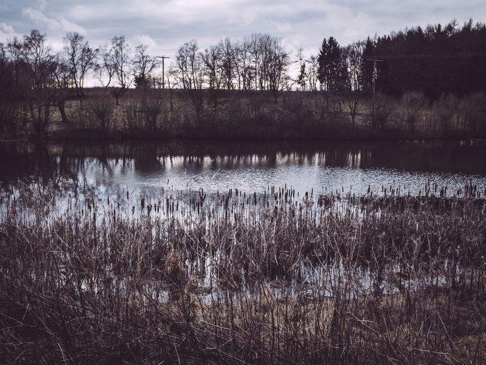 Bärenroder Teich in Bärenrode (Güntersberge, Harz, Sachsen-Anhalt)