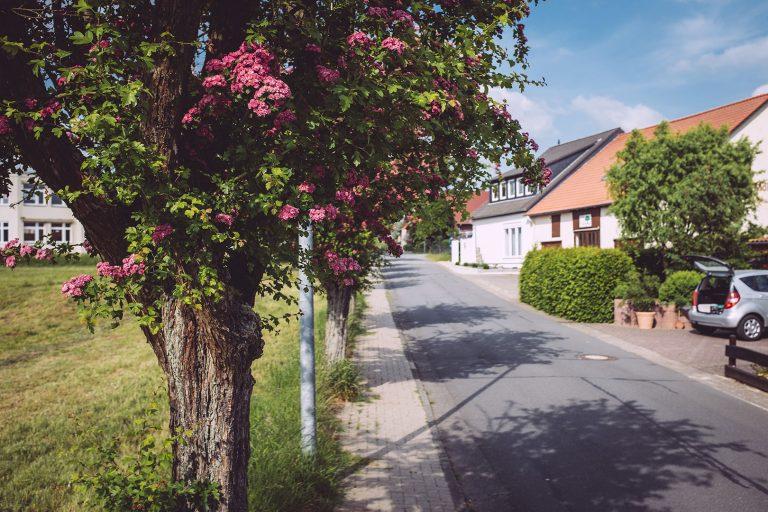 Straße in Drüber (Northeim, Niedersachsen)