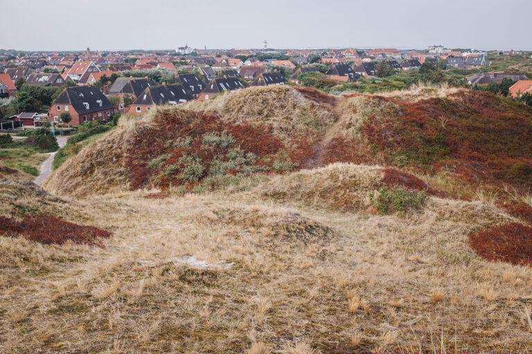 Dünen und Häuser auf Langeoog (Wittmund, Niedersachsen)